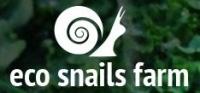 Eco Snails Farm Hodowla Ślimaków